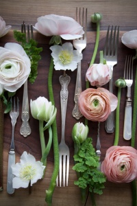 Stems and Forks